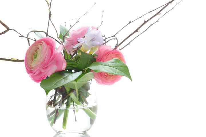 bouquet of pink ranunculus with spring branches