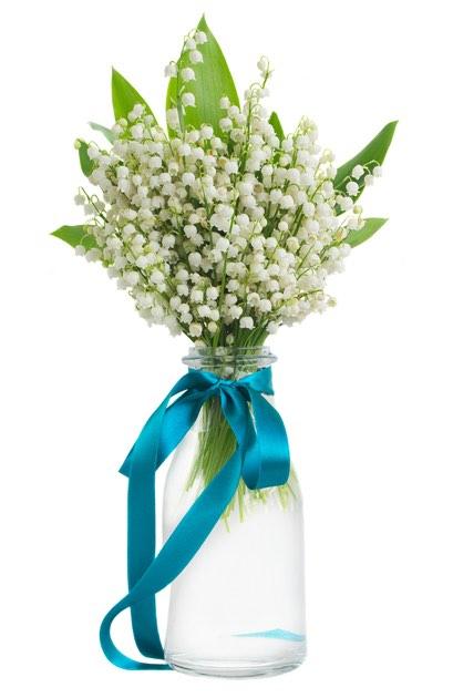 Liljekonvaller i vase